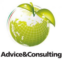 Advice Consulting